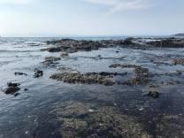 Playa Ocotal pools